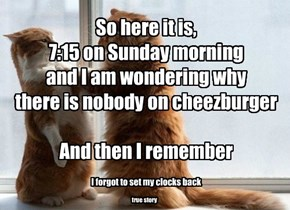 So here it is, 7:15 on Sunday morning and I am wondering why  there is nobody on cheezburger  And then I remember