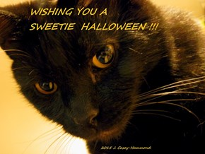 Wishing you a SWEETIE Halloween!