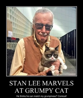 STAN LEE MARVELS AT GRUMPY CAT
