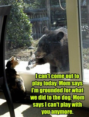 I can't come out to  play today. Mom says I'm grounded for what we did to the dog. Mom says I can't play with you anymore.