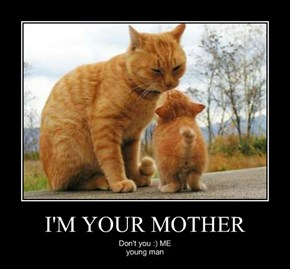 I'M YOUR MOTHER