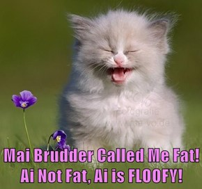 Mai Brudder Called Me Fat!  Ai Not Fat, Ai is FLOOFY!