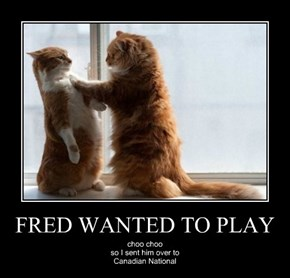 FRED WANTED TO PLAY
