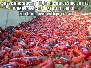 Shave one side and light the other side on fire.  When the crabs make a run for it ...                                    run them over with your car