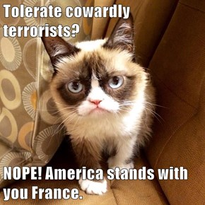 Tolerate cowardly terrorists?   NOPE! America stands with you France.