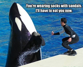 You're wearing socks with sandals. I'll have to eat you now.
