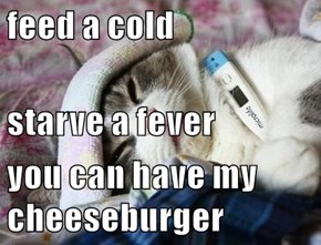 feed a cold starve a fever you can have my cheeseburger