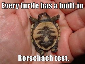Every turtle has a built-in              Rorschach test.