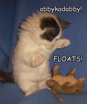 Rise! Floats! Anyfings!