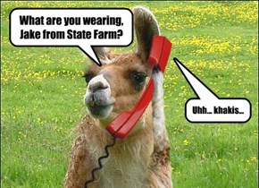 Jake from State Farm? In the middle of a field?