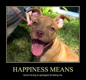 HAPPINESS MEANS