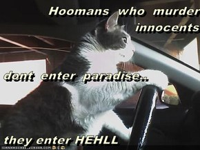 Hoomans  who  murder innocents dont  enter  paradise.. they enter HEHLL