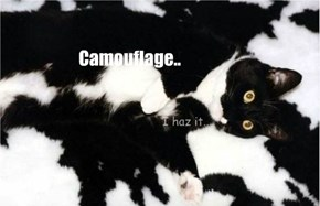 Camouflage..