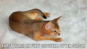 FURST WARM AN FUZZY SNOWFALL OV TEH SEASON