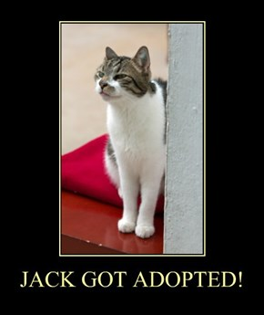 JACK GOT ADOPTED!