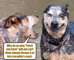 Fetch..