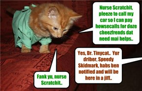 To all those cheezfrends that have health issues and may have been in the hospital recently, Dr. Tinycat is on duty and will be paying all of you a visit to get you back in great health!