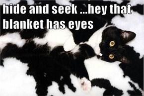 hide and seek ...hey that blanket has eyes
