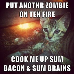 PUT ANOTHR ZOMBIE ON TEH FIRE  COOK ME UP SUM BACON & SUM BRAINS