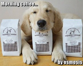 Morning coffee...  by osmosis