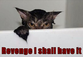 Revenge I shall have it