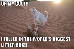 OH MY GOD!!!  I FALLED IN THE WORLD'S BIGGEST LITTER BOX!!