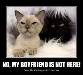 NO, MY BOYFRIEND IS NOT HERE!