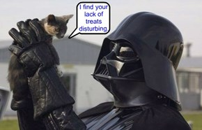 I find your lack of treats disturbing