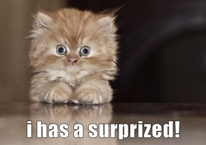 i has a surprized!