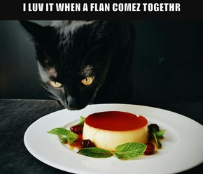 I LUV IT WHEN A FLAN COMEZ TOGETHR