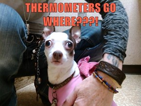 THERMOMETERS GO WHERE???!