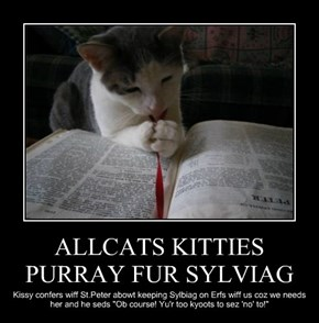 ALLCATS KITTIES PURRAY FUR SYLVIAG