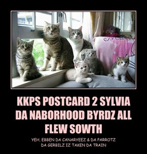 KKPS POSTCARD 2 SYLVIA DA NABORHOOD BYRDZ ALL FLEW SOWTH