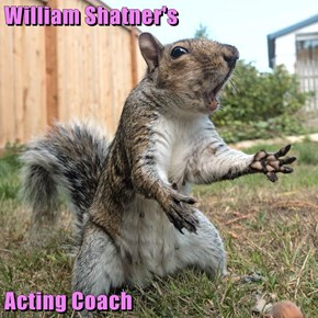 William Shatner's  Acting Coach