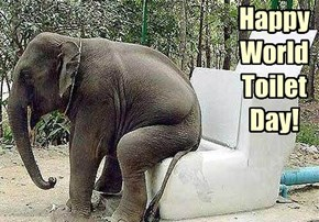 Happy World Toilet Day!