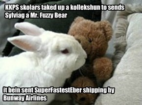 KKPS skolars taked up a kollekshun to sends Sylviag a Mr. Fuzzy Bear