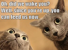 Oh, did we wake you?      Well, since you're up, you can feed us now.