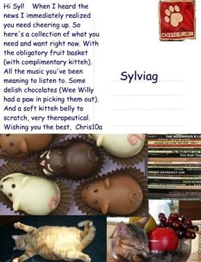 Postcard to Sylvia