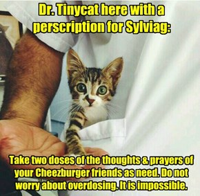 Our Thoughts & Prayers Are With You Sylviag