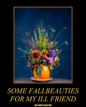 SOME FALLBEAUTIES FOR MY ILL FRIEND