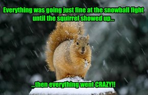 Everything was going just fine at the snowball fight until the squirrel showed up...           ...then everything went CRAZY!!