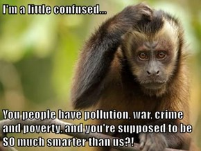 I'm a little confused...  You people have pollution, war, crime and poverty, and you're supposed to be SO much smarter than us?!
