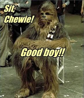 """""""Sit, Chewie! Good boy!!"""""""