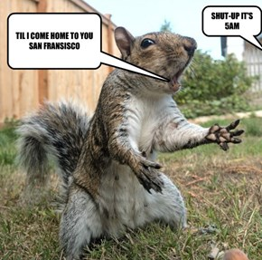 WHEN JIM AND SUE BOUGHT THEIR HOME THERE WAS NO MENTION OF THE SINGING SQUIRREL IN THR BACK YARD!!!