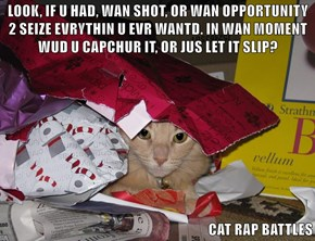 LOOK, IF U HAD, WAN SHOT, OR WAN OPPORTUNITY 2 SEIZE EVRYTHIN U EVR WANTD. IN WAN MOMENT WUD U CAPCHUR IT, OR JUS LET IT SLIP?  CAT RAP BATTLES