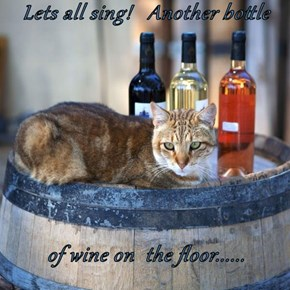 Lets all sing!   Another bottle  of wine on  the floor......