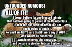 UNFOUNDED RUMORS!