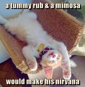 a tummy rub & a mimosa  would make his nirvana