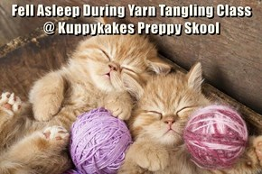 Fell Asleep During Yarn Tangling Class                     @ Kuppykakes Preppy Skool