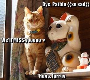 Bye, Patblo {{so sad}} We'll MISS yooooo ♥                Hugs, furrgy